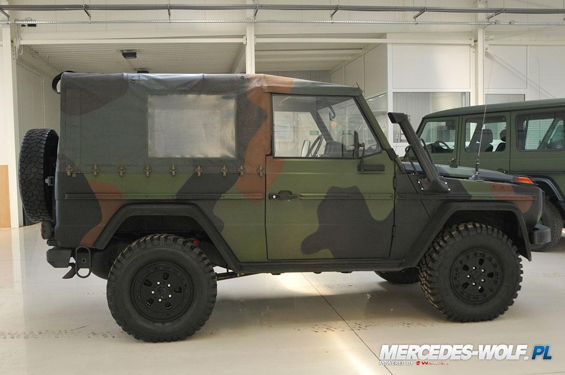 mercedes benz 250gd wolf mercedes mercedes g class g force 1 ru mercedes g. Black Bedroom Furniture Sets. Home Design Ideas